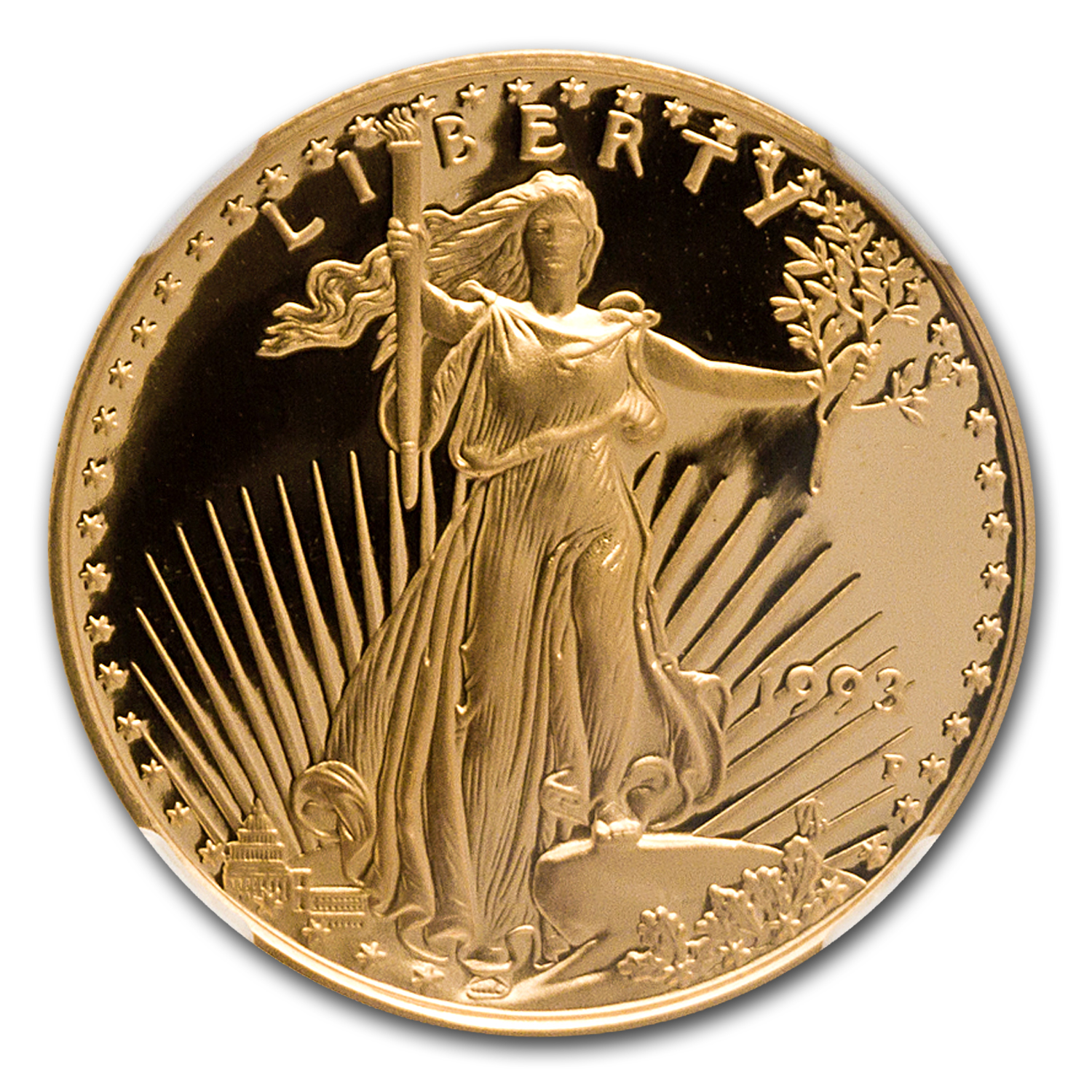 1993-P 1/4 oz Proof Gold American Eagle PF-70 NGC Registry Set